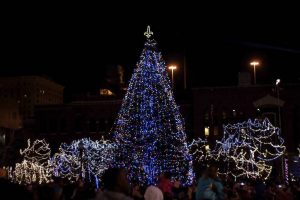 louisvillechristmastree